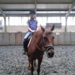 Larissa paard